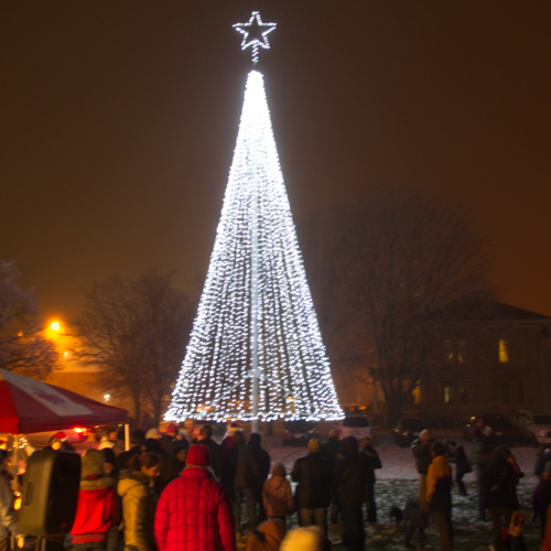 Picture of 2012 St. Clements Tree of Light all lit up